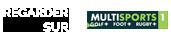Regardez le match sur Multisports